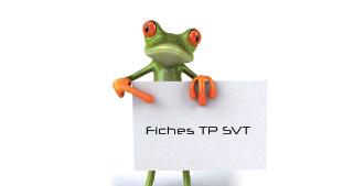 Fiches TP SVT