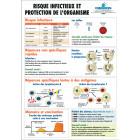 PLANCHE : RISQUE INFECTIEUX ET PROTECTION DE L'ORGANISME