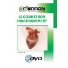 FILM : LE CŒUR ET SON FONCTIONNEMENT
