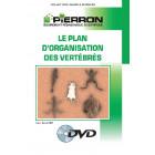 FILM : LE PLAN D'ORGANISATION DES VERTÉBRÉS