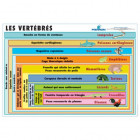 LOT DE 3 PLANCHES CLASSIFICATION