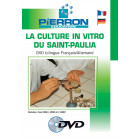 FILM : LA CULTURE IN VITRO DU SAINT PAULIA