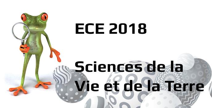 ECE 2018 SVT